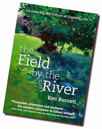 The Field By The River: Uncovering the Nature of French Country Life