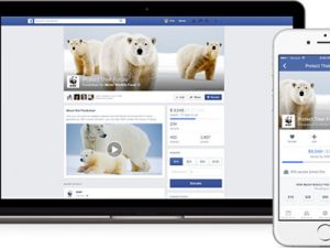 Facebook sets its sights on fundraising
