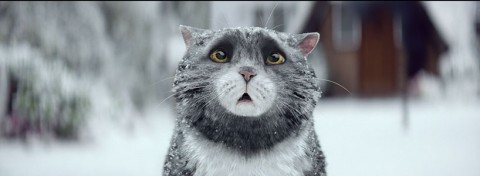 Mog in Sainsbury's Christmas TV ad, supporting Save the Children