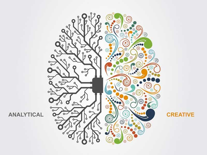 Analytical v creative brain functions - shai_halud on Shutterstock.com
