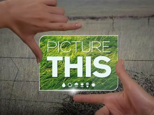 Picture This app lets people support global environmental campaign with images