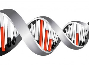 Fundraising Media DNA delivers direct mail donor insights
