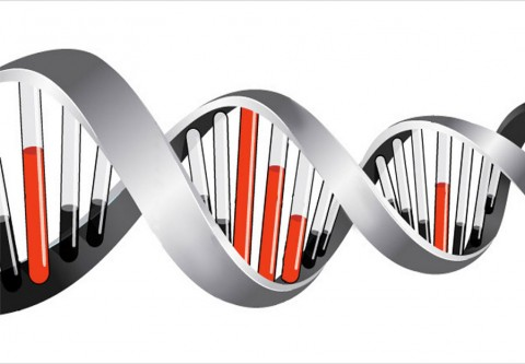 Fundraising Media DNA - helix