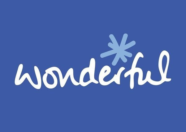 Low-cost fundraising platform Wonderful Payments reopens [partnership with open banking payments provider Citizen]...
