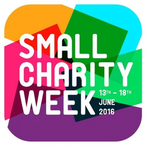 Small Charity Week 2016