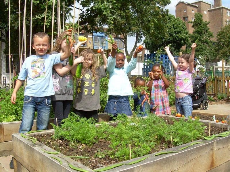 edible playgrounds