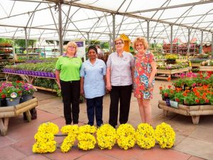 Wyevale Garden Centres raises £750,000 for Marie Curie