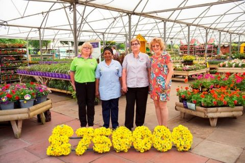 Wyevale Marie Curie