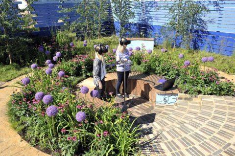 CRUK VR garden