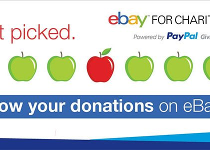 Growing donations on eBay