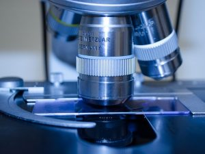 Four universities to share in £17.7m of research funding