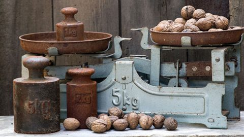 Weights, scales and nuts - image: Pixabay