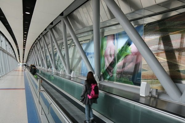 skybridge wwf hsbc