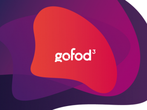 Gofod3 third sector event launches for Wales