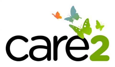 care2 logo