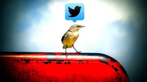 """Twitter"" by Uncalno Tekno is licensed under CC BY 2.0"
