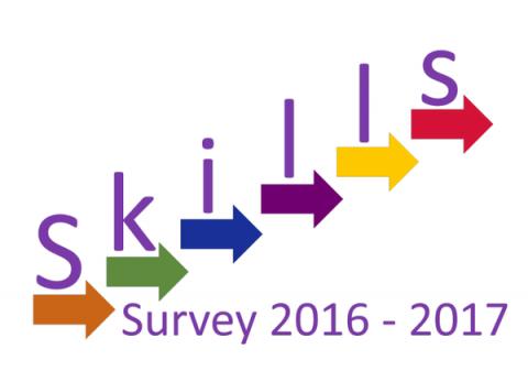 fsi skills survey