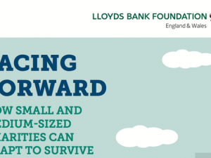 Lloyds Bank Foundation report calls for greater support to help small charities