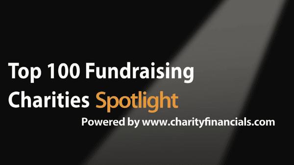top 100 fundraising charities