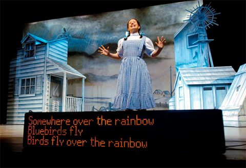 Stagetext captions for The Wizard of Oz at the Lowry. Photo: Ben Blackhall