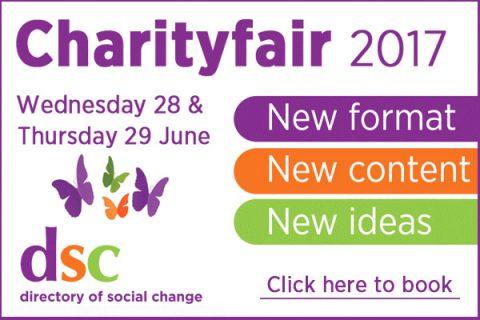 DSC CharityFair 2017