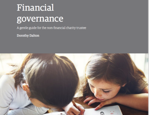 finsncial governance