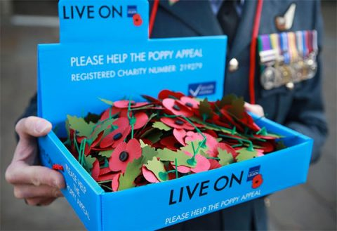 Poppies in a Poppy Appeal blue tray