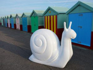 Snailspace trail launches as follow-up to Snowdogs by the Sea for Martlets