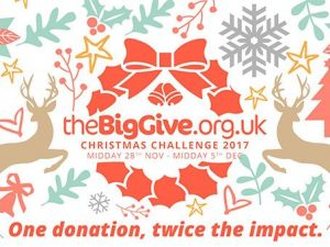 The Big Give Christmas Challenge in numbers