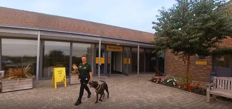 Reception in Dogs Trust VR film