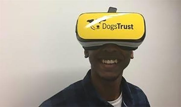 Dogs Trust virtual reality experience