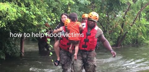 Google search - how to help flood victims