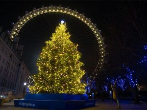 Marie Curie Christmas tree lights are powered by shared memories