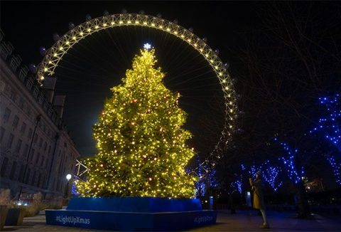 #LightUpXmas Marie Curie Christmas tree on London's Southbank