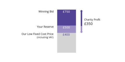 Auction Direct income chart