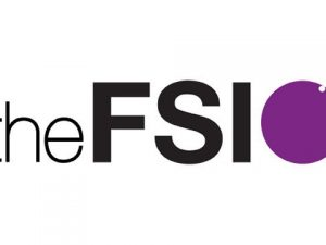Speakers sought for FSI's fundraising conference for small charities