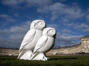 Owls swoop into Bath this summer to raise funds for local charities
