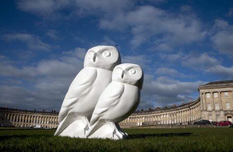 Minerva's owls in Bath