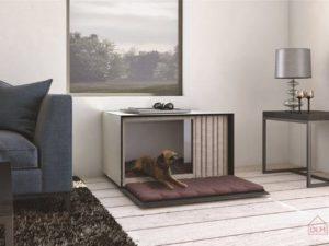 Designer doghouses to raise funds for Blue Cross