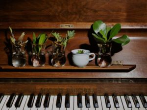 Two approaches to charity on Piano Day
