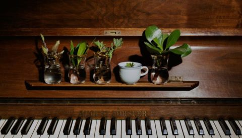 Piano - for Give a Piano on Piano Day (29th March)