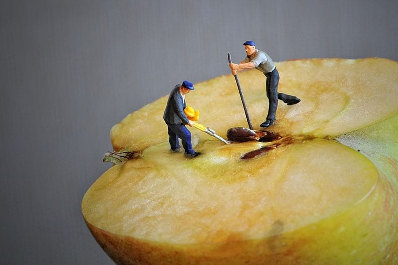 Tiny model figures working on an apple core