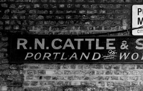 Cattle font