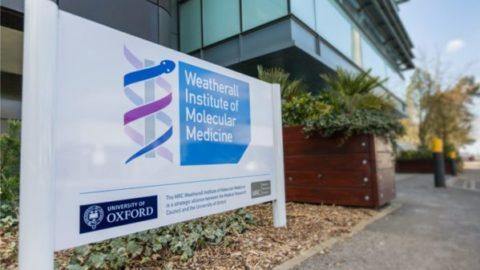 MRC Weatherall Institute of Molecular Medicine