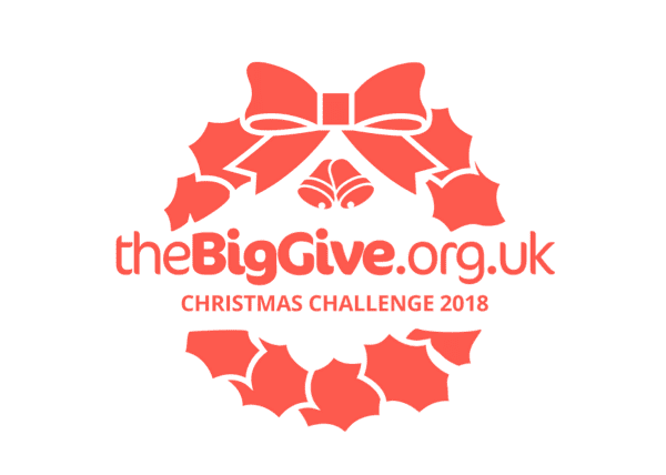 Christmas Challenge.The Big Give Anticipates Biggest Ever Christmas Challenge