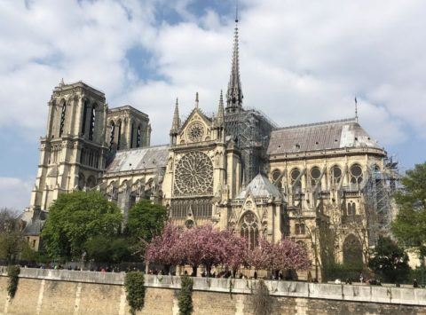 Notre Dame copyright MMay