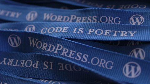 WordPress.org lanyards