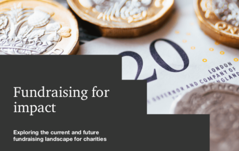 Fundraising for Impact report