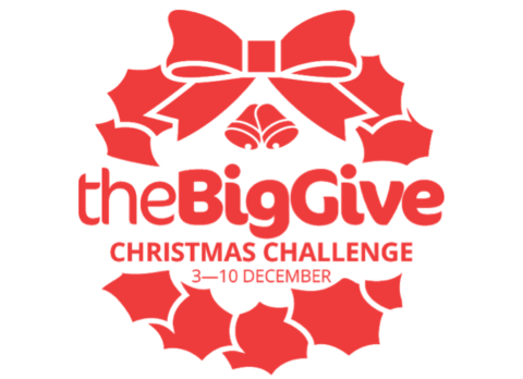 Big Give Christmas Challenge 2019