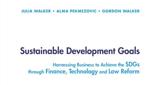 Sustainable Development Goals book